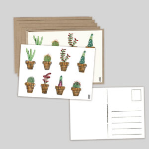 kaartenset cactus